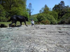 15 khoảnh khắc khi cún cưng bỗng trở thành quái vật khổng lồ